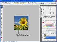 washi_no2.jpg