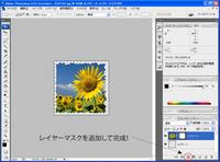 washi_no6.jpg