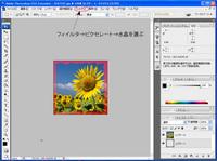 washi_no_4.jpg